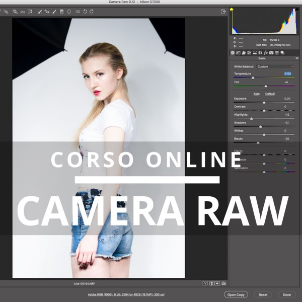 corso camera raw online in internet